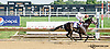 Tappinintovictory winning at Delaware Park on 8/5/14