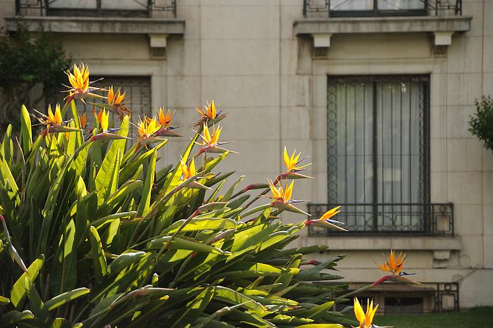 Casas en Santiago de Chile.