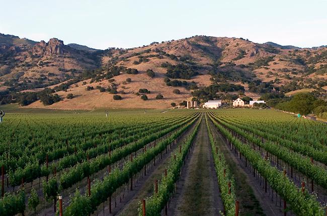 Regusci Winery on Silverado Trail north of Napa, CA