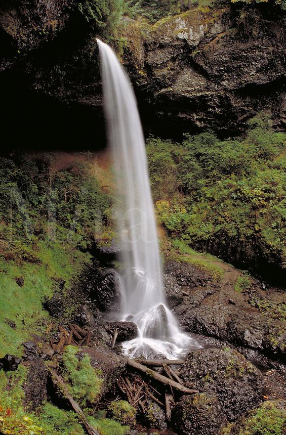 North Falls. Oregon USA Silver Falls State Park.