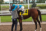 """September 19, 2020: Jockey Justin Stein hugs trainer Kevin Attard after Starship Jubilee #4, wins the Ricoh Woodbine Mile, a Breeders' Cup """"Win and You're In Race"""" at Woodbine Racetrack in Toronto, Ontario, Canada Victor Biro/Eclipse Sportswire/CSM"""