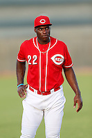 Aldi Guzman #22 of the AZL Reds before a game against the AZL Padres at the Cincinnati Reds Spring Training Complex on July 13, 2013 in Goodyear, Arizona. AZL Reds defeated the AZL Padres, 11-10. (Larry Goren/Four Seam Images)