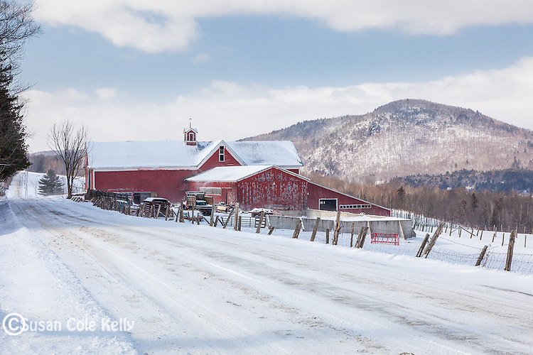 Northeast Kingdom farm country in Barnet, Vermont, USA