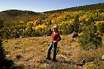 Woman amidst Golden Aspen leaves, aspen trees in fall, autumn, fall leaves, red, green, gold fall color, model released, Dixie National Forest, Utah, UT, Image ut334-18138, Photo copyright: Lee Foster, www.fostertravel.com, lee@fostertravel.com, 510-549-2202