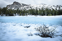 Winter in Tuolumne Meadows at Yosemite National Park
