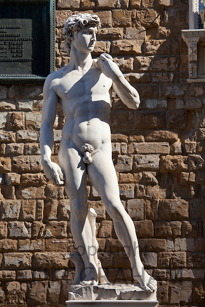 Replica copy of Michelangelo's statue of David, in Piazza Signoria by the Palazzo Vecchia, Florence, Tuscany, Italy