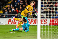 Lukasz Fabianski of Swansea City clashes in the penalty area during the Premier League match between Swansea City and Tottenham Hotspur at The Liberty Stadium, Swansea, Wales, UK. Wednesday 05 April 2017