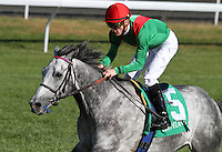 Capitan Futuro (GB) and Julien Leparoux win the 6th race, Allowance on the turf for 3 year old & up colts.   October 18, 2012.
