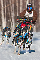 Greg Selletin drives a 6 dog team in the 2009 Limited North American sprint sled dog race, Fairbanks, Alaska.