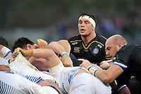 Francois Louw of Bath Rugby looks on at a scrum. European Rugby Champions Cup match, between Bath Rugby and Leinster Rugby on November 21, 2015 at the Recreation Ground in Bath, England. Photo by: Patrick Khachfe / Onside Images