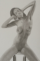 Hazel ~ 12.88 x 8.5 inches (32.72 x 21.59 cm) Graphite on paper by Shawn Punch