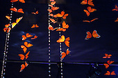 Monarch butterflies decorate the State Dinner reception tent on the South Lawn of the White House, Wednesday, May 19, 2010, in honor of President Felipe Calderón and his birthplace of Michoacán, Mexico. The Monarch butterfly makes its annual migration from Canada to Michoacán in early spring each year. .Mandatory Credit: Lawrence Jackson - White House via CNP