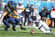 Morgantown, WV - November 10, 2018: TCU Horned Frogs wide receiver Taye Barber (4) recovers a fumble during the game between TCU and WVU at  Mountaineer Field at Milan Puskar Stadium in Morgantown, WV.  (Photo by Elliott Brown/Media Images International)