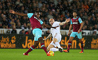 Jonjo Shelvey of Swansea City dives in to challenge Michail Antonio of West Ham United during the Barclays Premier League match between Swansea City and West Ham United played at The Liberty Stadium, Swansea on 20th December 2015
