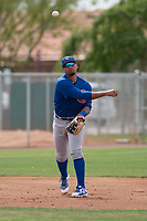 Chicago Cubs third baseman Wladimir Galindo (19) warms up between innings of a Minor League Spring Training game against the Oakland Athletics at Sloan Park on March 13, 2018 in Mesa, Arizona. (Zachary Lucy/Four Seam Images)