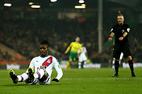 1st January 2020; Carrow Road, Norwich, Norfolk, England, English Premier League Football, Norwich versus Crystal Palace; Wilfried Zaha of Crystal Palace goes down but the referee says play on - Strictly Editorial Use Only. No use with unauthorized audio, video, data, fixture lists, club/league logos or 'live' services. Online in-match use limited to 120 images, no video emulation. No use in betting, games or single club/league/player publications