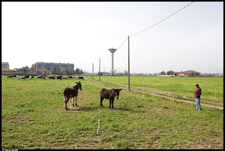 BORGARO - via Santi Cosma e Damiano