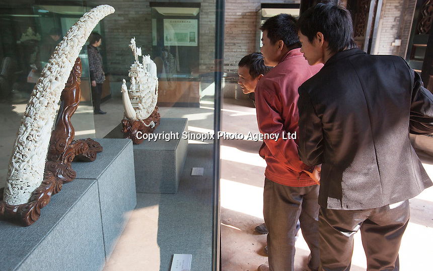 Tourists look at ivory on display at Chen Clan Academy, an officially licenced retail outlet, as authorised by China's State Forestry Administration, Li Wan District, Guangzhou, Guangdong Province, China, 28 November 2013. <br /> <br /> Photo by Alex Hofford / Sinopix