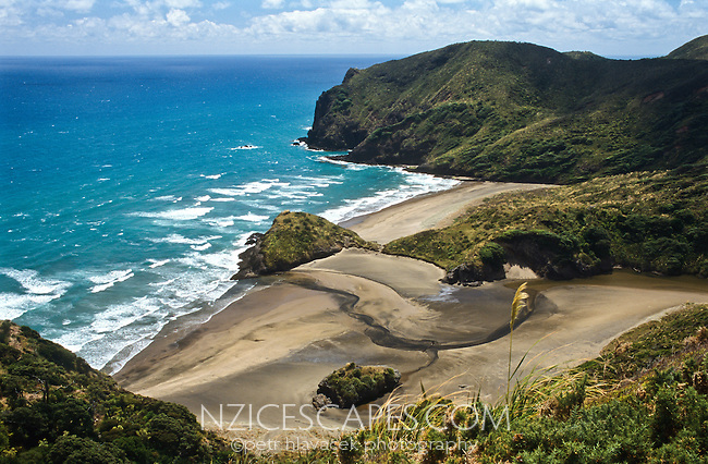 Paikea Bay north of Piha township - West Auckland, New Zealand