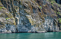 Glacier Bay Cliffs