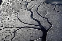 Mud Flats, Eureka, California