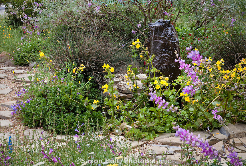 Walkway around black natural stone fountain and small pond with yellow monkeyflower in California native plant front yard garden