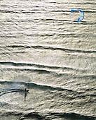 Fly surf, Nouméa