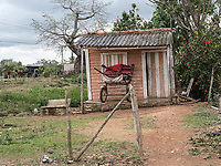 Horse carts, Consolación del Sur