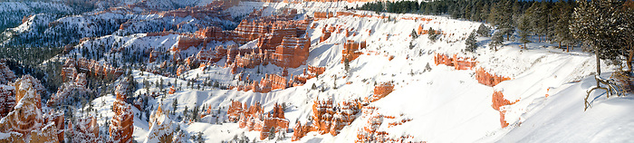 904000012 panoramic view of a winter sunrise over the hoodoos from sunset point in bryce canyon national park utah