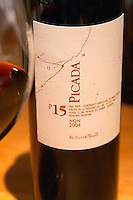 Bottle of Picada 15 P15 NQN Bodega NQN Winery, Vinedos de la Patagonia, Neuquen, Patagonia, Argentina, South America