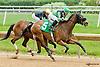 Hope Still Springs winning at Delaware Park on 5/27/13.