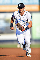 Asheville Tourists first baseman Johnny Cresto (17) reacts to the play during a game against the Lakewood BlueClaws at McCormick Field on August 6, 2019 in Asheville, North Carolina. The Tourists defeated the BlueClaws 5-2. (Tony Farlow/Four Seam Images)