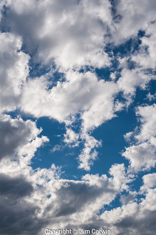 Cumulus congestus couds with darkening sky