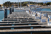 Many of the berths at the San Leandro Marina are occupied by gulls instead of boats.
