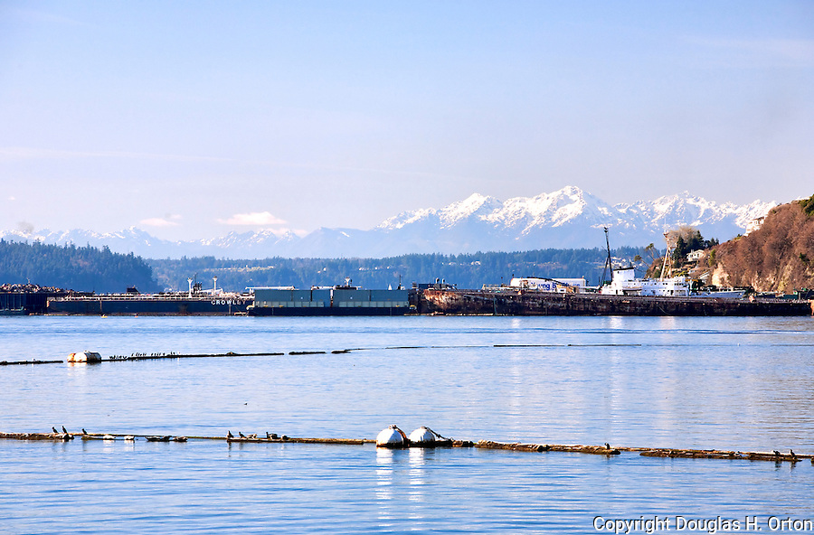 A combination of oil and scrap barges, plus derelict vessels, and the Olympic Mountains in Olympic National Park backstop the western view from Commencement Bay.   Commencement Bay's history of industry and shipping has led it to designation as one of the most pulluted waterways in the nation.
