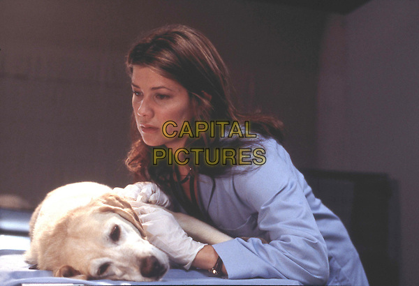 "Dr. Amanda Morton (Daphne Zuniga) works feverishly to save the life of the much-loved Hunter (Casey the dog) after he gets shot in the line of duty in the comical and heartwarming PAX original movie, ñGhost Dog: A Detective Tail,"" premiering Friday, January 10th ,2003.Filmstill - Editorial Use Only .Ref: FB .www.capitalpictures.com.sales@capitalpictures.com.Supplied by Capital Pictures"
