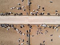 Aerial drone shots. Rancho La Glorieta, Durango, Mexico