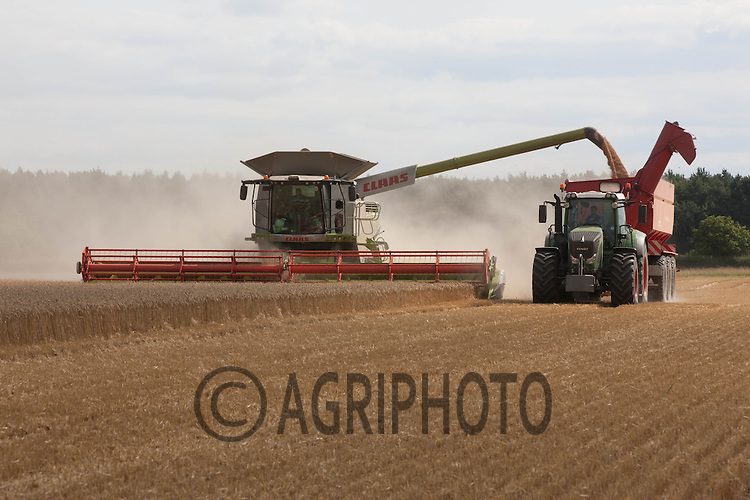Claas Lexion 780 harvesting wheat and emptying into a chaser bin<br /> Picture Tim Scrivener 07850 303986