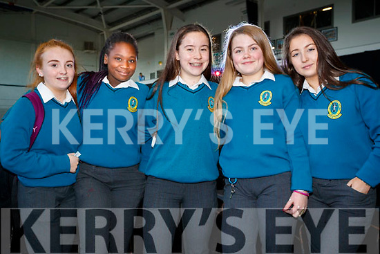 Colette O'Mahony, Jane Vike, Gillian Lane, Sarah Costello and Shonagh Maguire, pictured at Mercy Mounthawk Secondary School Fashion Show held at the School Gym on Wednesday last.