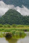 Marsh and mountain scene south of Lok Nga, Aceh.