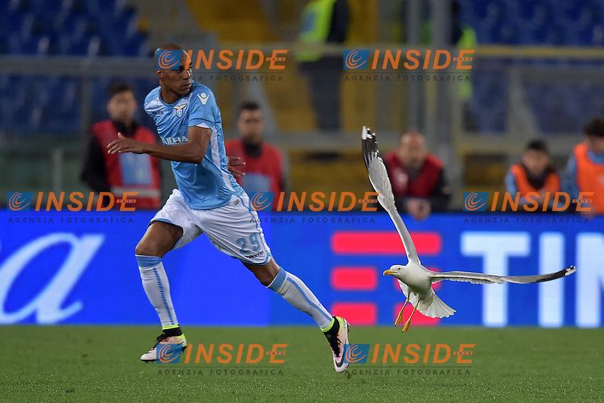Abdoulay Konko Lazio sembra inseguito da un gabbiano. Seagull <br /> Roma 01-05-2016 Stadio Olimpico Football Calcio Serie A 2015/2016 Lazio - Inter Foto Andrea Staccioli / Insidefoto
