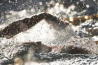 Christopher Ciccarese,<br /> 200m Backstroke Men.<br /> Roma 01-07-2018 Stadio del Nuoto Foro Italico<br /> FIN 55 Trofeo Settecolli 2018 Internazionali d'Italia<br /> Photo Antonietta Baldassarre/Deepbluemedia/Insidefoto