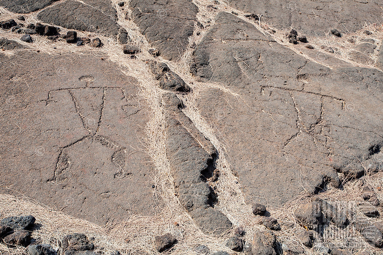 Petroglyphs or ki'i pohaku at the Waikoloa Petroglyph Field (a.k.a. 'Anaeho'omalu Petroglyph Field), Big Island.