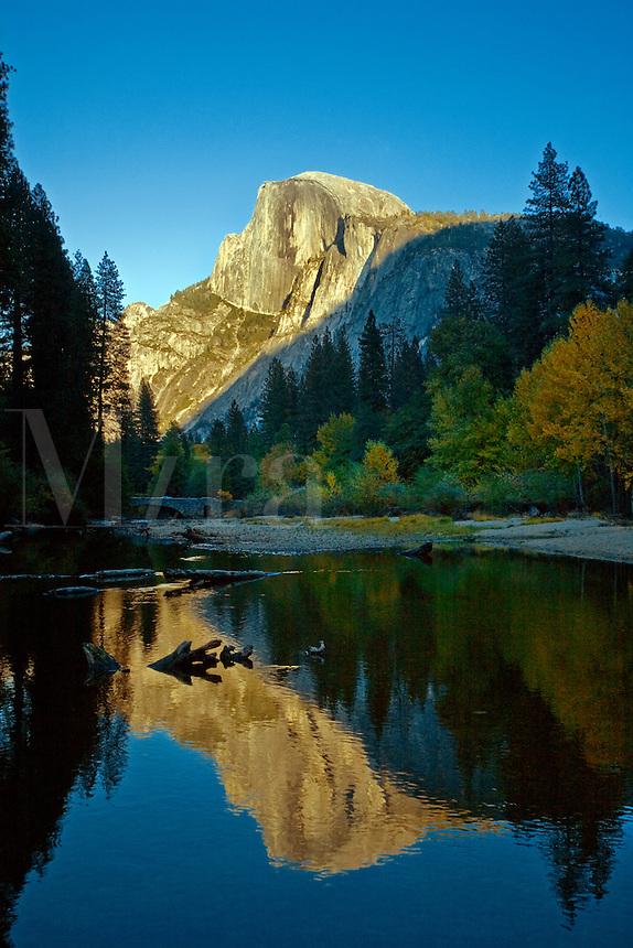 HALF DOME is reflected in the MERCED RIVER during  the fall season - YOSEMITE NATIONAL PARK, CALIFORNIA