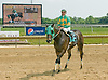 Core of Steal winning at Delaware Park on 5/28/12