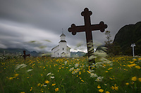 Flower filled cemetery at Gimsøy church, Gimsøy, Lofoten Islands, Norway