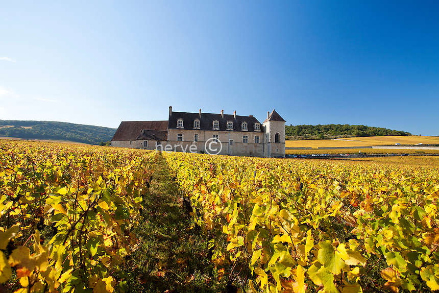 France, Côte d'Or (21), Route des Grands Crus, vignoble Côte de Nuits, Clos de Vougeot, le vignoble en automne et le château du Clos de Vougeot // France, Cote d'Or, Route des Grands Crus, Cote de Nuits vineyard, Clos de Vougeot, vines in autumn and Chateau Clos de Vougeot