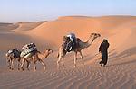 Mauritania Amatlich desert