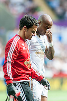Andre Ayew of Swansea  hold his nose after a clash during the Barclays Premier League match between Swansea City and Everton played at the Liberty Stadium, Swansea  on September 19th 2015