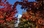 Fall colors at the Capitol in Carson City, Nev., on Thursday, Oct. 25, 2018. <br /> Photo by Cathleen Allison/Nevada Momentum